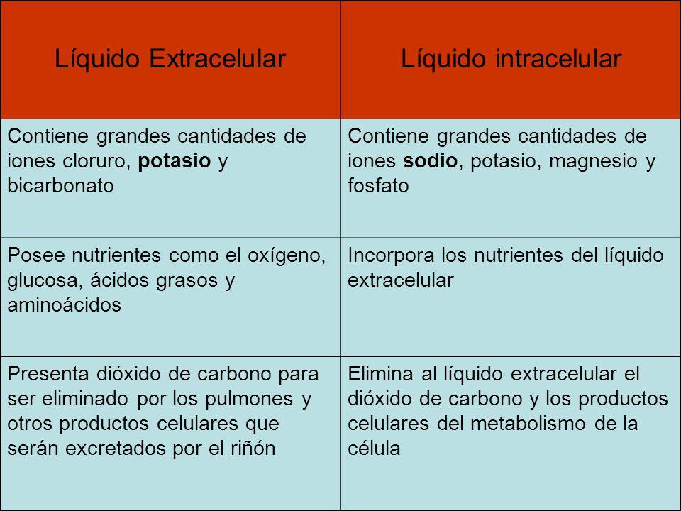 Líquido Extracelular Líquido intracelular