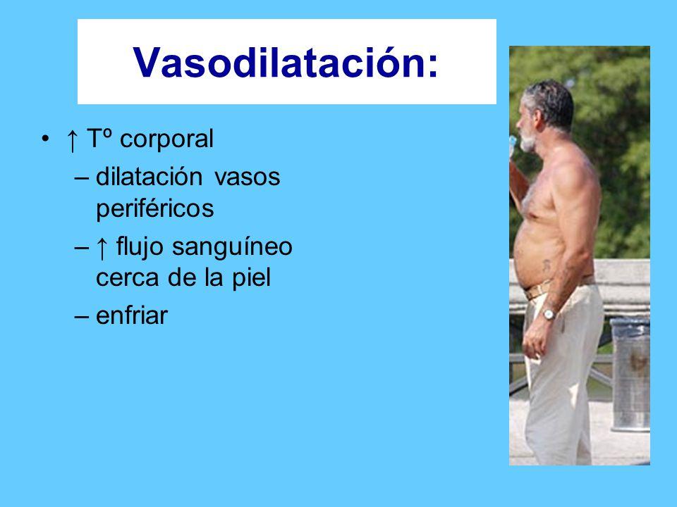 Vasodilatación: ↑ Tº corporal dilatación vasos periféricos