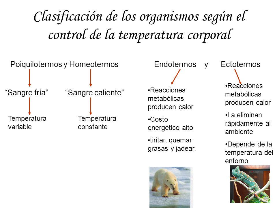 Clasificación de los organismos según el control de la temperatura corporal
