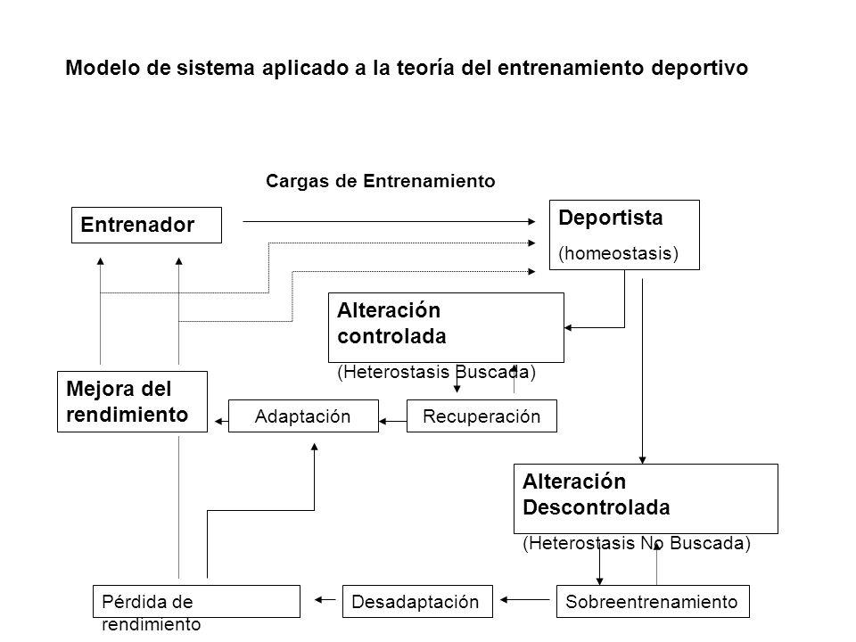 Modelo de sistema aplicado a la teoría del entrenamiento deportivo