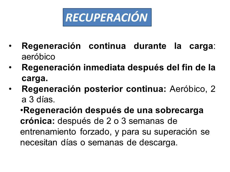 RECUPERACIÓN Regeneración continua durante la carga: aeróbico