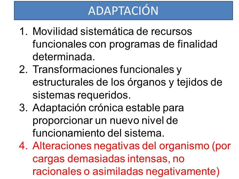 ADAPTACIÓN Movilidad sistemática de recursos funcionales con programas de finalidad determinada.