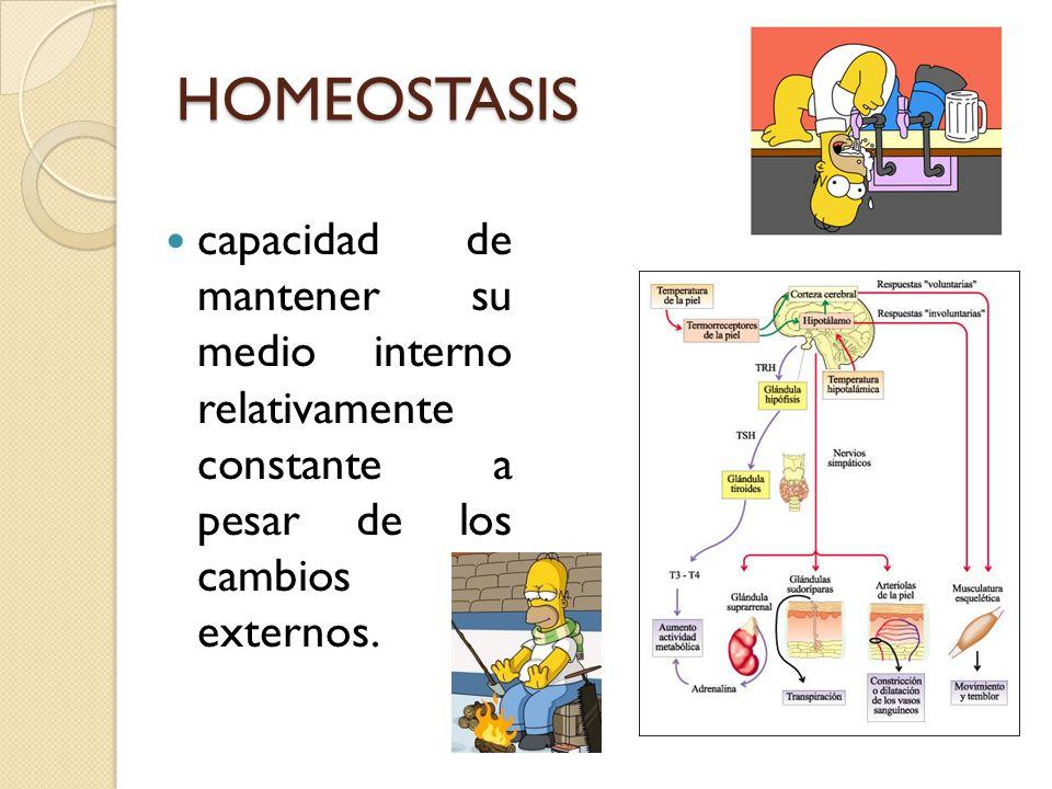 HOMEOSTASIS capacidad de mantener su medio interno relativamente constante a pesar de los cambios externos.
