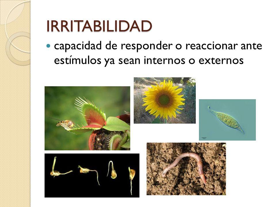 IRRITABILIDAD capacidad de responder o reaccionar ante estímulos ya sean internos o externos