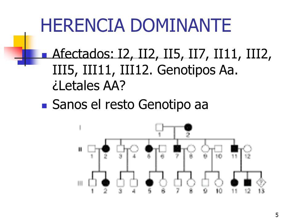 HERENCIA DOMINANTE Afectados: I2, II2, II5, II7, II11, III2, III5, III11, III12. Genotipos Aa. ¿Letales AA