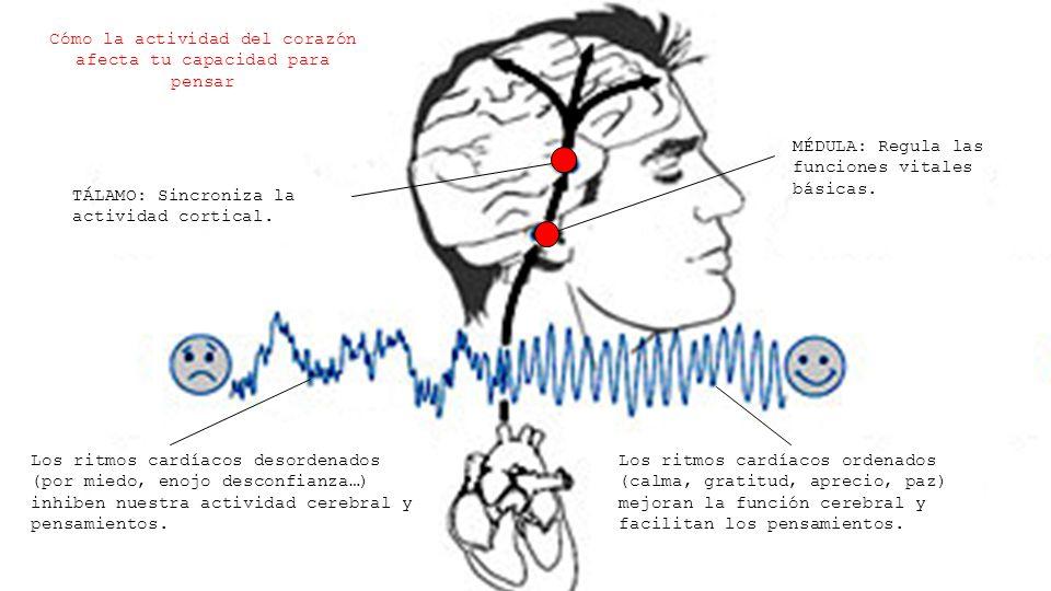 Cómo la actividad del corazón afecta tu capacidad para pensar