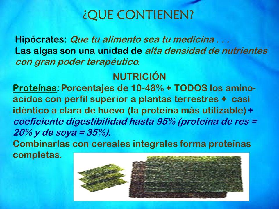 ¿QUE CONTIENEN Hipócrates: Que tu alimento sea tu medicina . . .