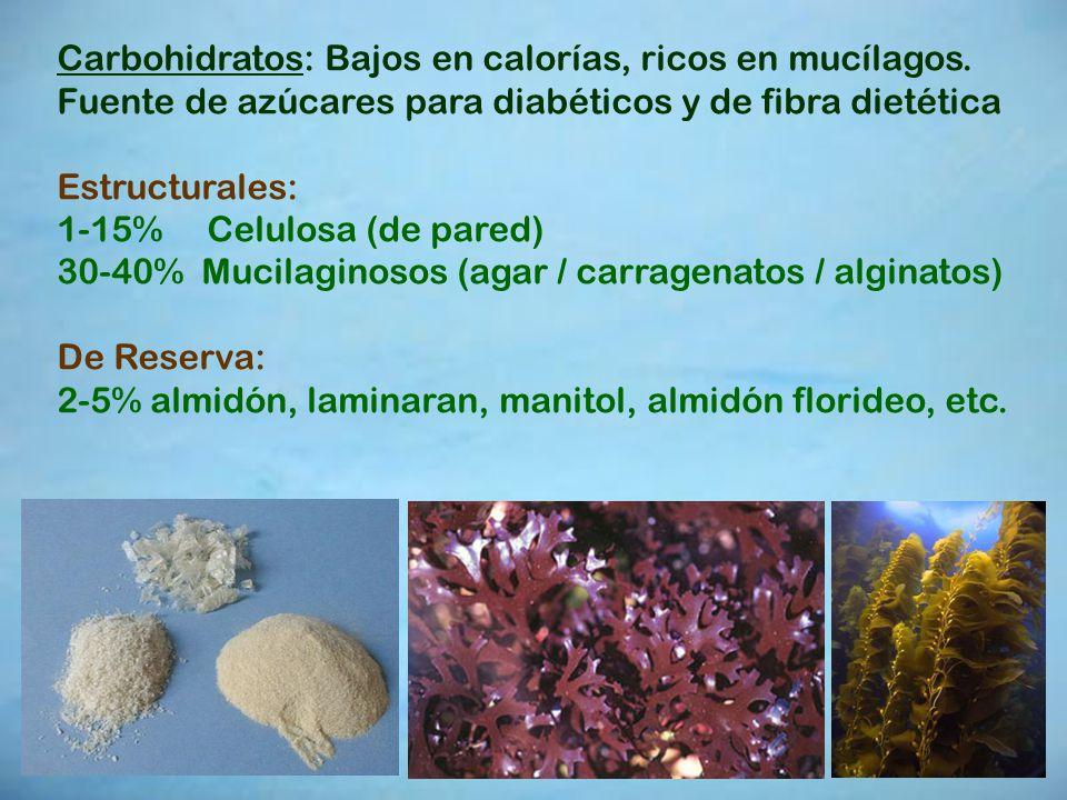 Carbohidratos: Bajos en calorías, ricos en mucílagos