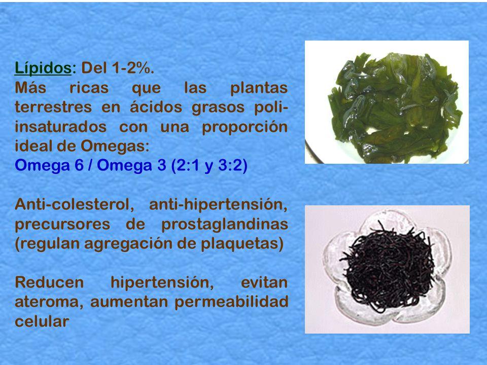 Lípidos: Del 1-2%. Más ricas que las plantas terrestres en ácidos grasos poli-insaturados con una proporción ideal de Omegas: