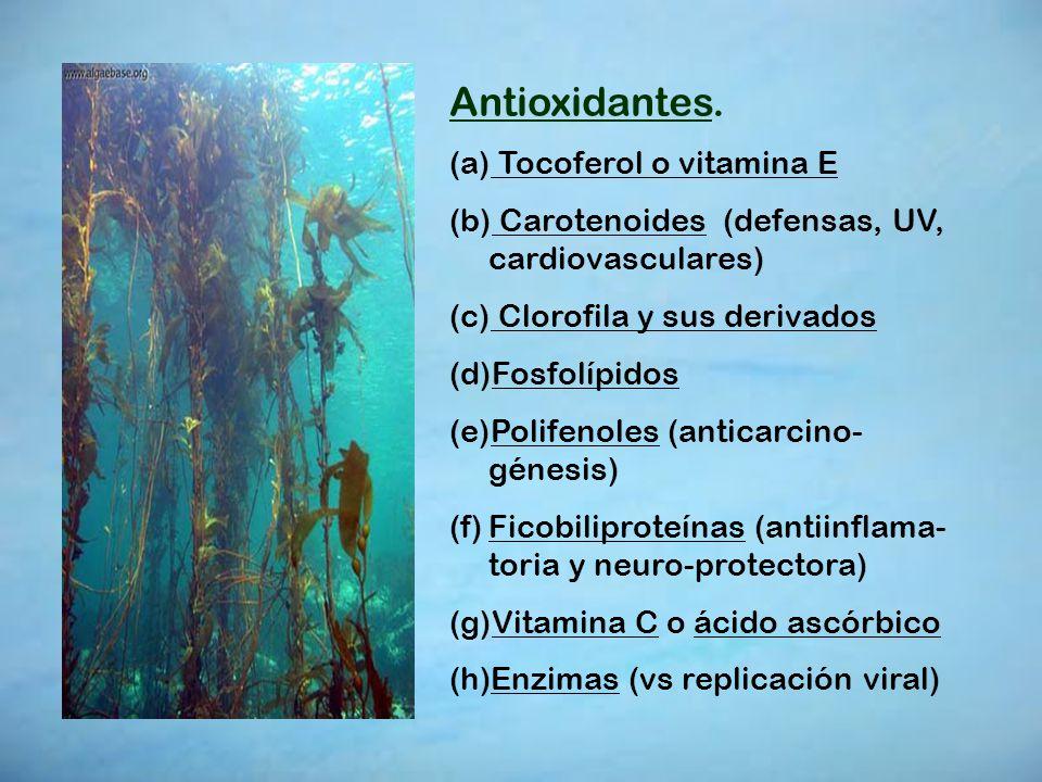 Antioxidantes. Tocoferol o vitamina E