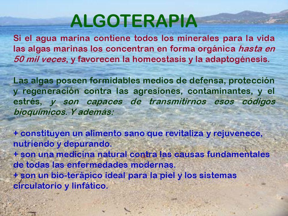 ALGOTERAPIA