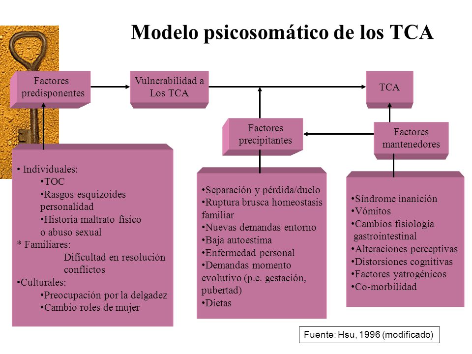 Modelo psicosomático de los TCA