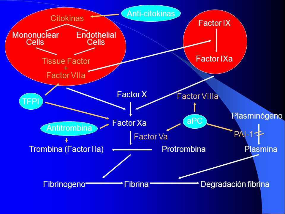Anti-citokinas Citokinas. Mononuclear. Cells. Endothelial. Tissue Factor. + Factor VIIa. Factor IX.