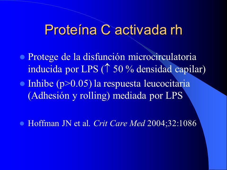 Proteína C activada rh Protege de la disfunción microcirculatoria inducida por LPS ( 50 % densidad capilar)