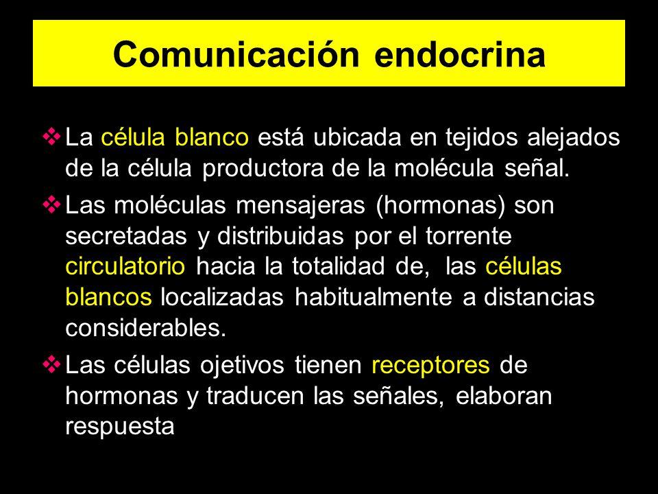 Comunicación endocrina