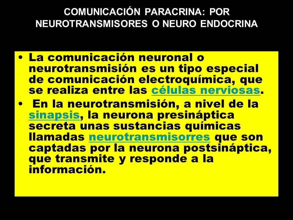 COMUNICACIÓN PARACRINA: POR NEUROTRANSMISORES O NEURO ENDOCRINA