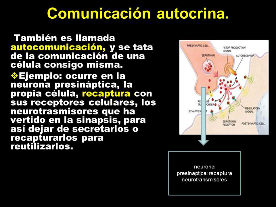 Comunicación autocrina.