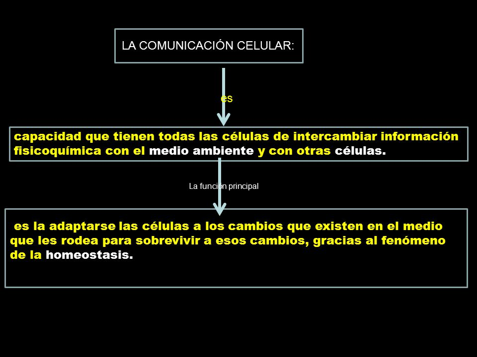 LA COMUNICACIÓN CELULAR: