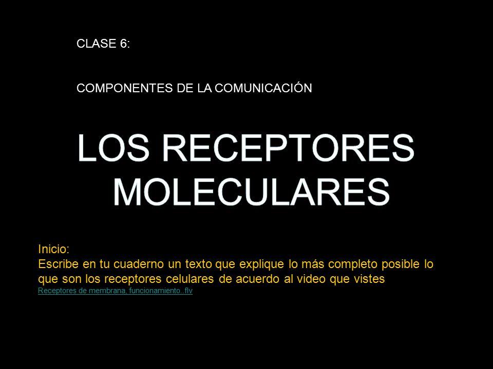 LOS RECEPTORES MOLECULARES CLASE 6: COMPONENTES DE LA COMUNICACIÓN