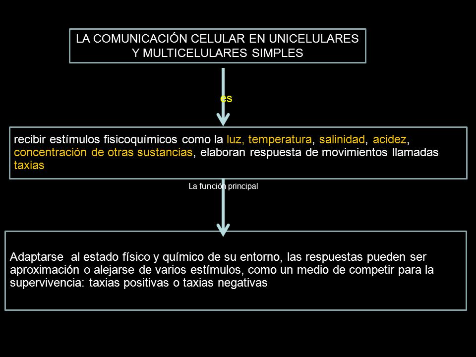 LA COMUNICACIÓN CELULAR EN UNICELULARES Y MULTICELULARES SIMPLES