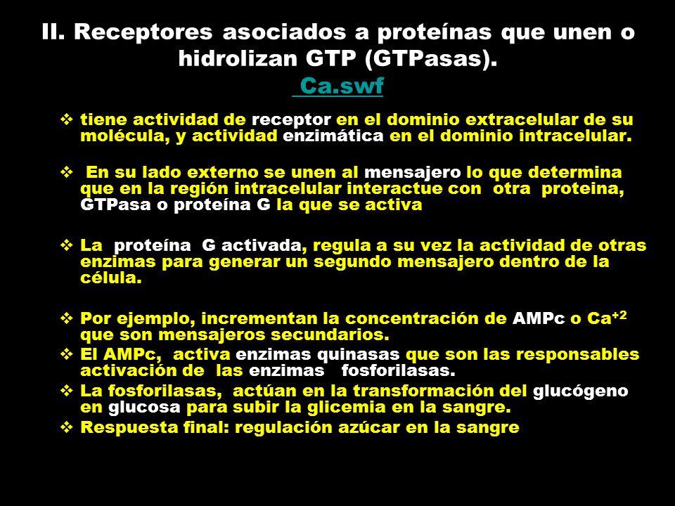II. Receptores asociados a proteínas que unen o hidrolizan GTP (GTPasas). Ca.swf