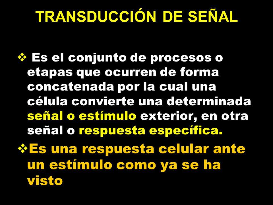 TRANSDUCCIÓN DE SEÑAL