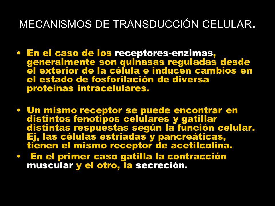 MECANISMOS DE TRANSDUCCIÓN CELULAR.