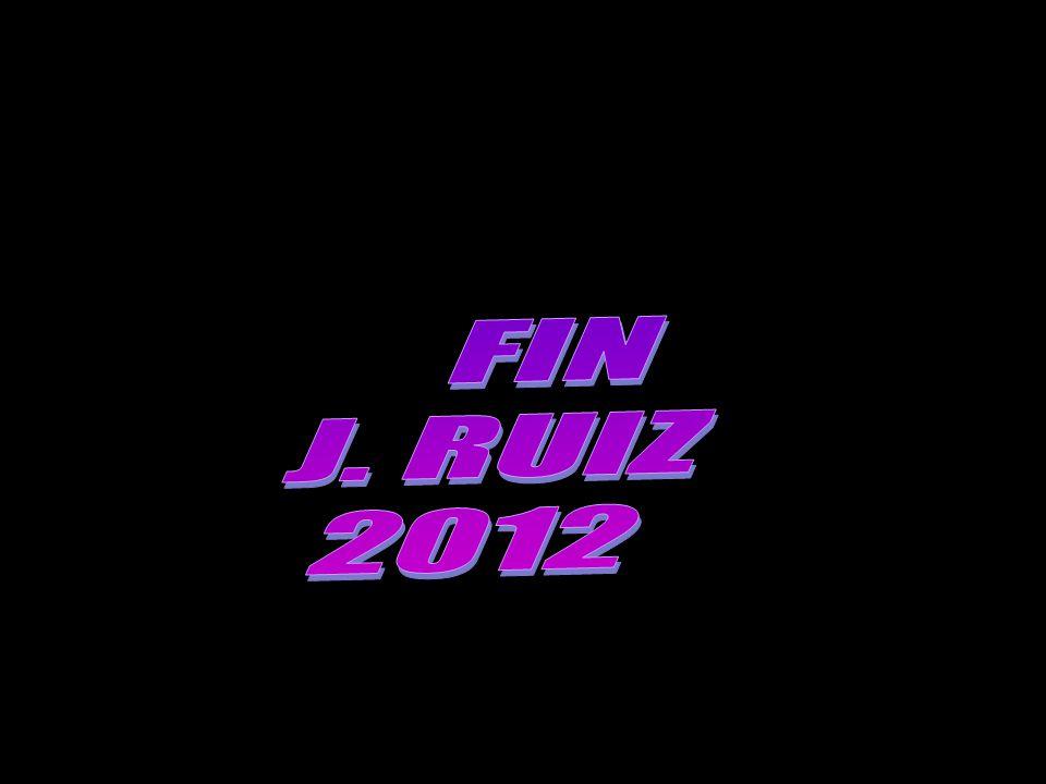 FIN J. RUIZ 2012