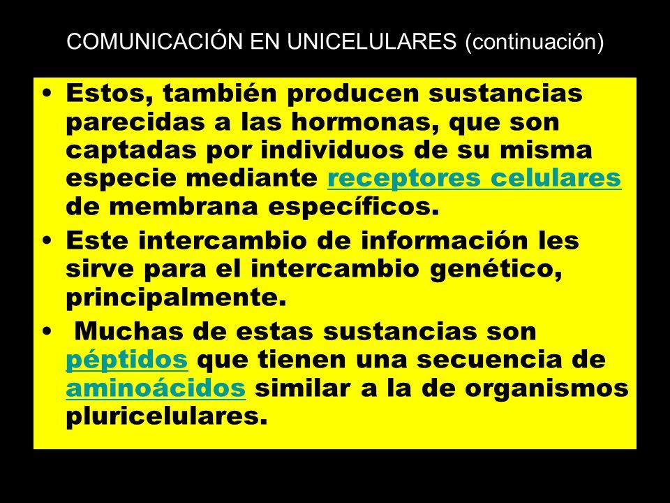 COMUNICACIÓN EN UNICELULARES (continuación)