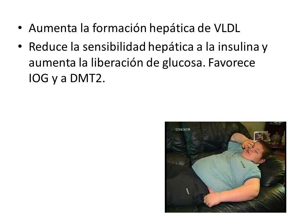 Aumenta la formación hepática de VLDL