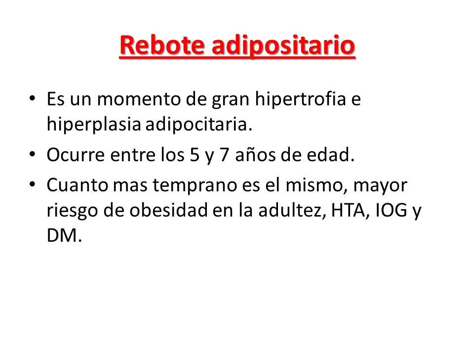 Rebote adipositario Es un momento de gran hipertrofia e hiperplasia adipocitaria. Ocurre entre los 5 y 7 años de edad.
