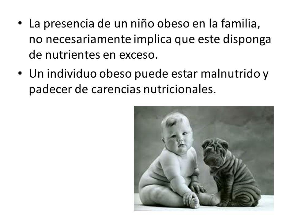 La presencia de un niño obeso en la familia, no necesariamente implica que este disponga de nutrientes en exceso.