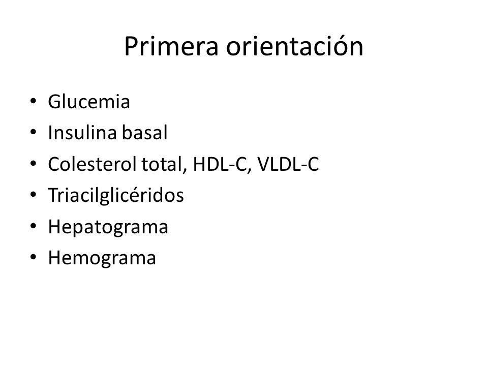 Primera orientación Glucemia Insulina basal