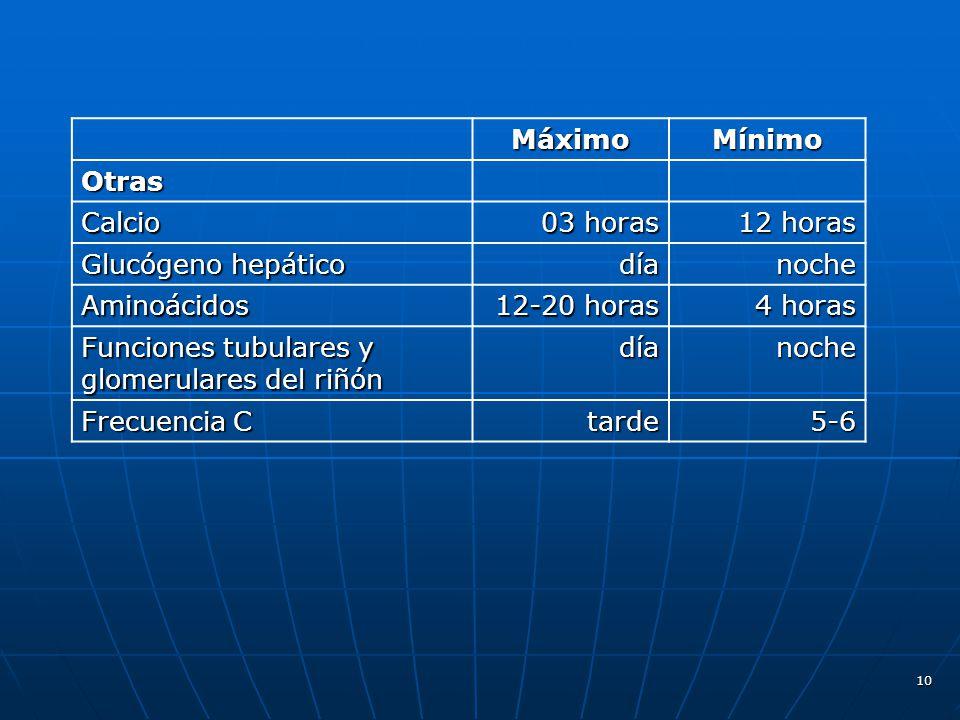 Máximo Mínimo. Otras. Calcio. 03 horas. 12 horas. Glucógeno hepático. día. noche. Aminoácidos.