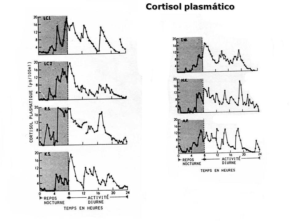 Cortisol plasmático