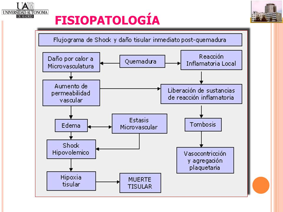 FISIOPATOLOGÍA