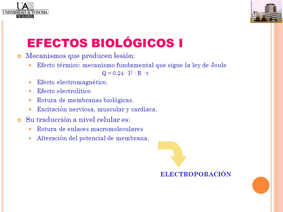 EFECTOS BIOLÓGICOS I Mecanismos que producen lesión: