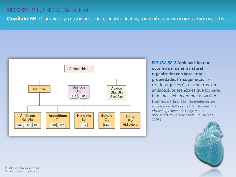 FIGURA 58-3 Aminoácidos que ocurren de manera natural organizados con base en sus propiedades fisicoquímicas.