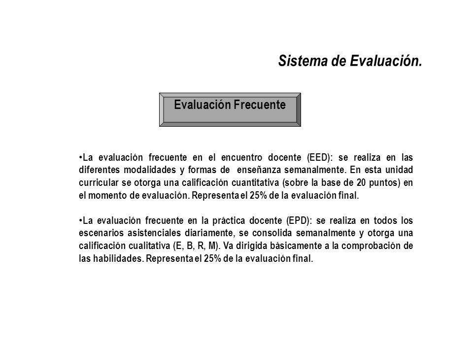 Sistema de Evaluación. Evaluación Frecuente