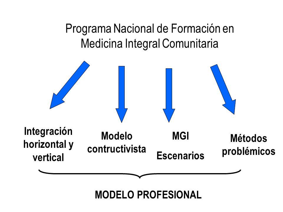 Integración horizontal y vertical Modelo contructivista