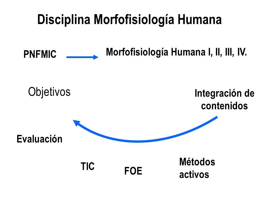 Disciplina Morfofisiología Humana Integración de contenidos