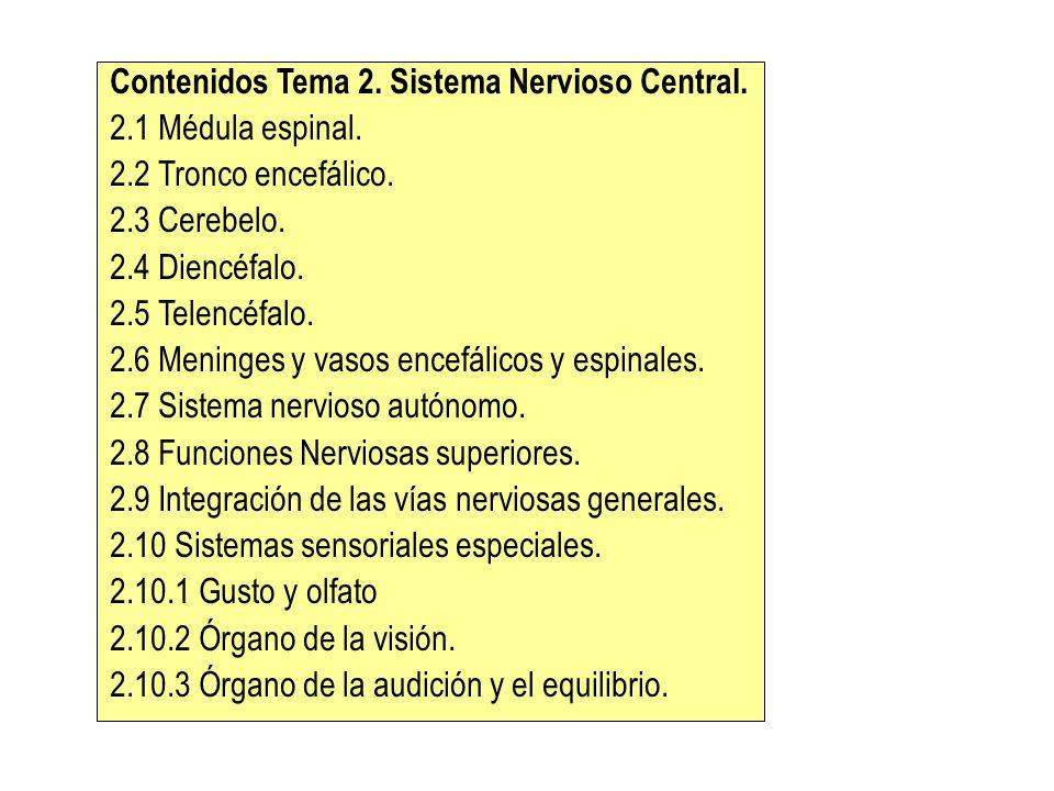 Contenidos Tema 2. Sistema Nervioso Central.