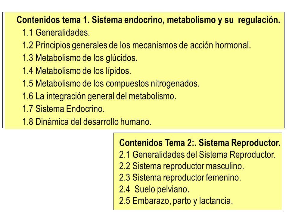 Contenidos tema 1. Sistema endocrino, metabolismo y su regulación.