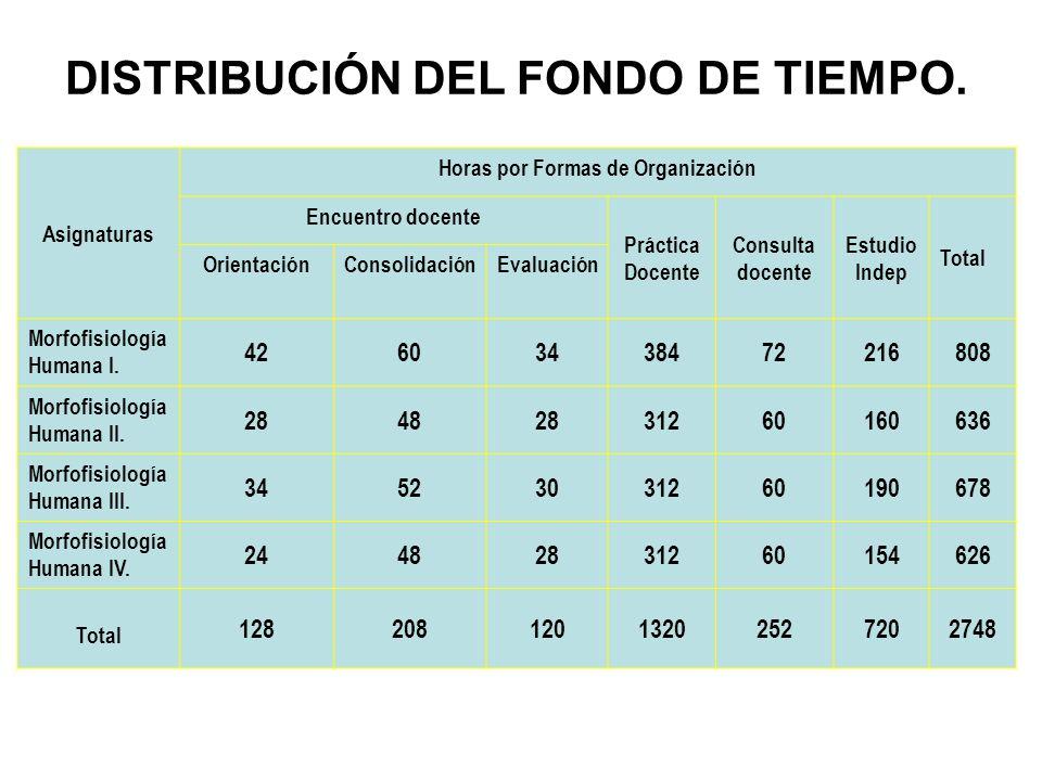 DISTRIBUCIÓN DEL FONDO DE TIEMPO. Horas por Formas de Organización