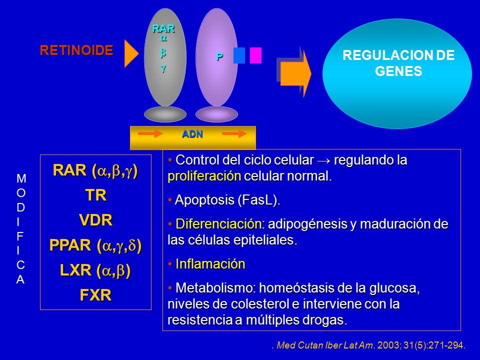 RAR (,,) TR VDR PPAR (,,) LXR (,) FXR