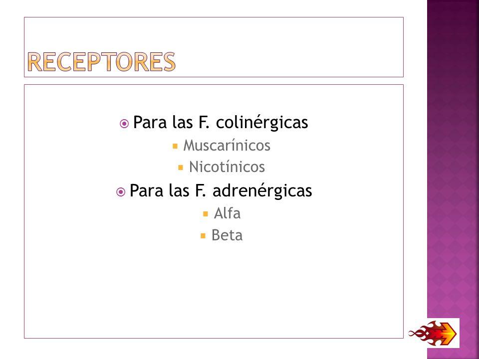 Receptores Para las F. colinérgicas Para las F. adrenérgicas