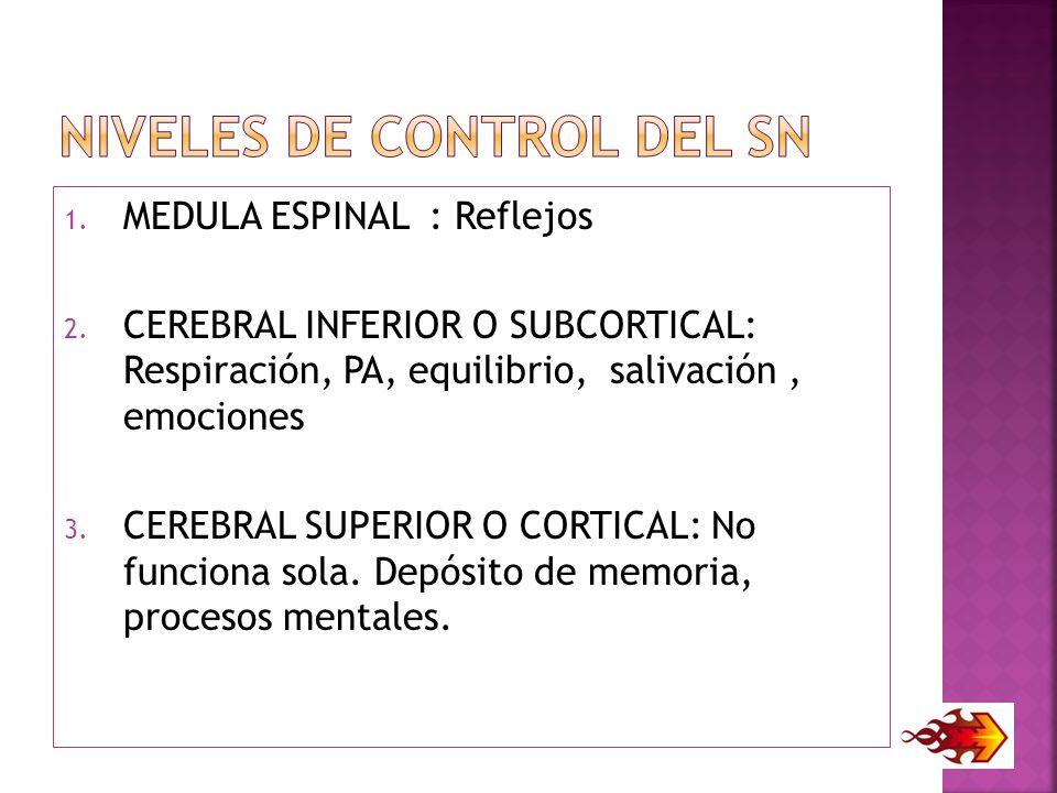 NIVELES DE CONTROL DEL SN