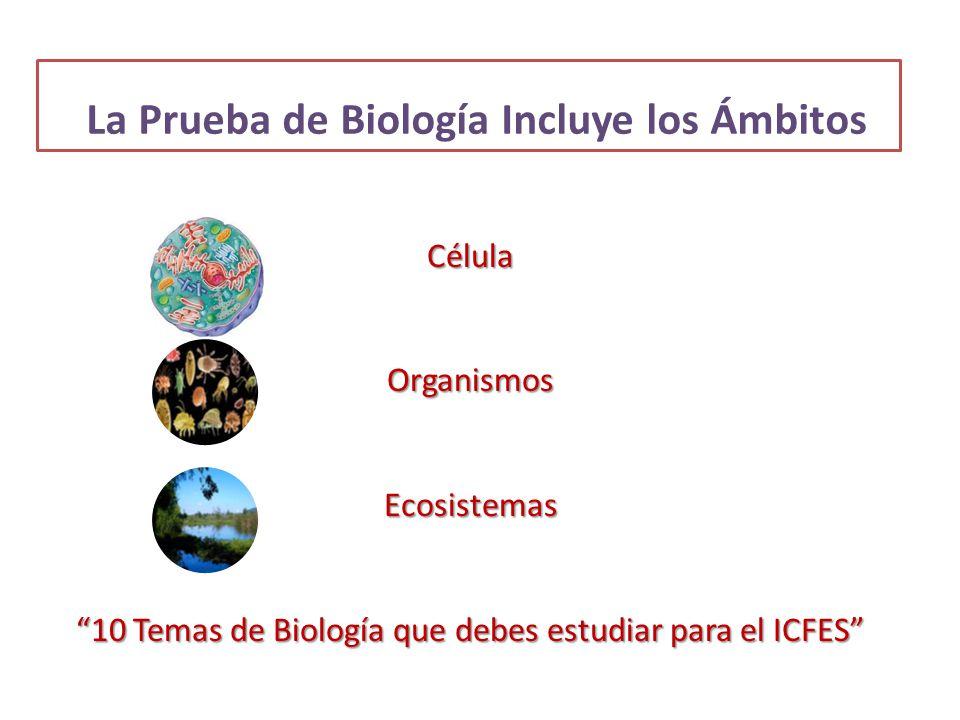 La Prueba de Biología Incluye los Ámbitos