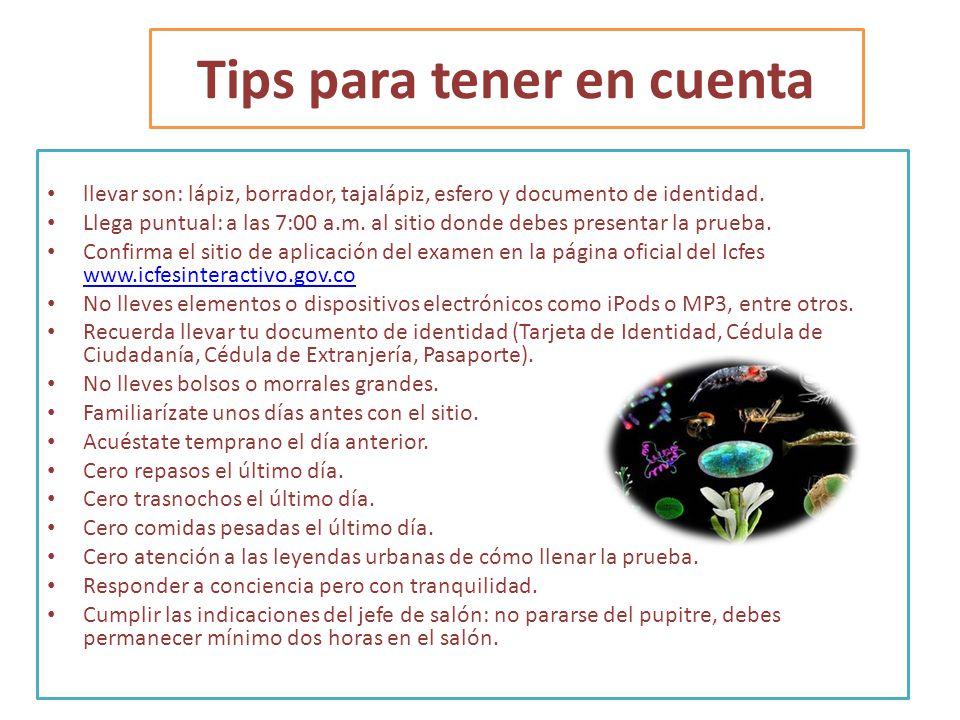Tips para tener en cuenta