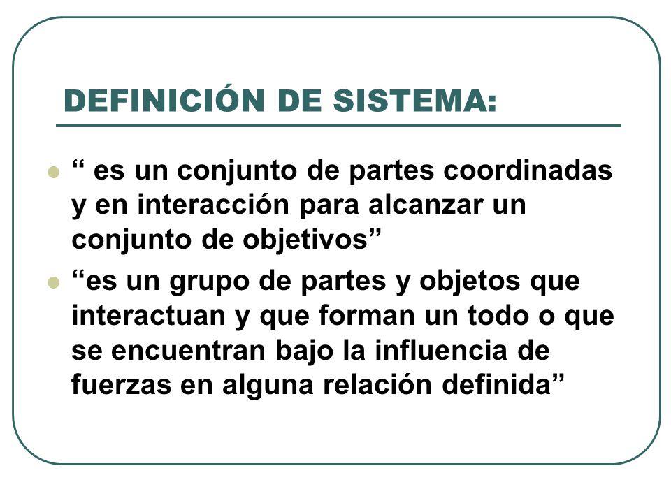 DEFINICIÓN DE SISTEMA: